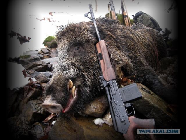В Татарстане охотник выстрелил в девушку, делающую селфи, приняв ее за сурка