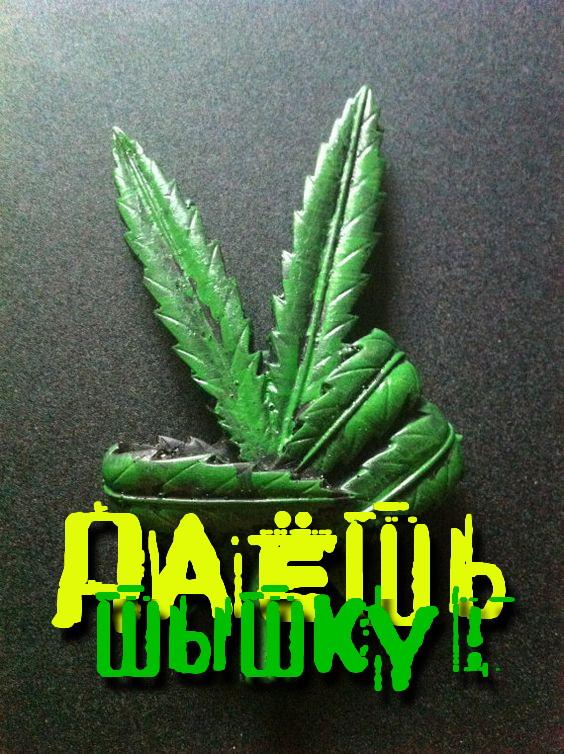 Легализация марихуаны википедия конопля в новосибирске
