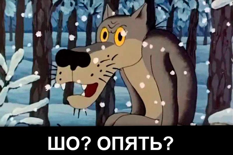 шо опять картинка волк