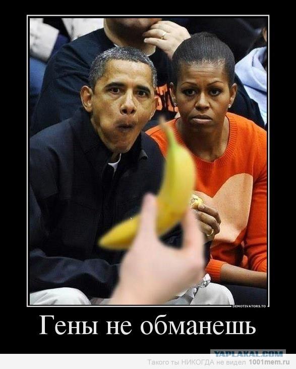 Обама и бананы картинки