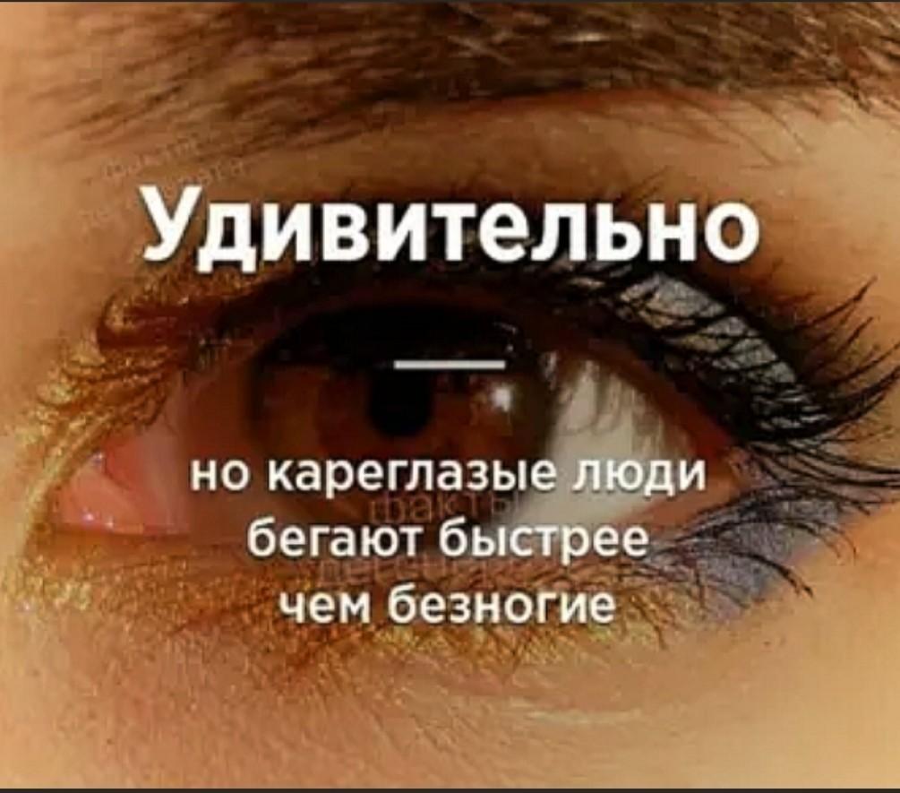 https://s00.yaplakal.com/pics/pics_original/1/0/3/13664301.jpg