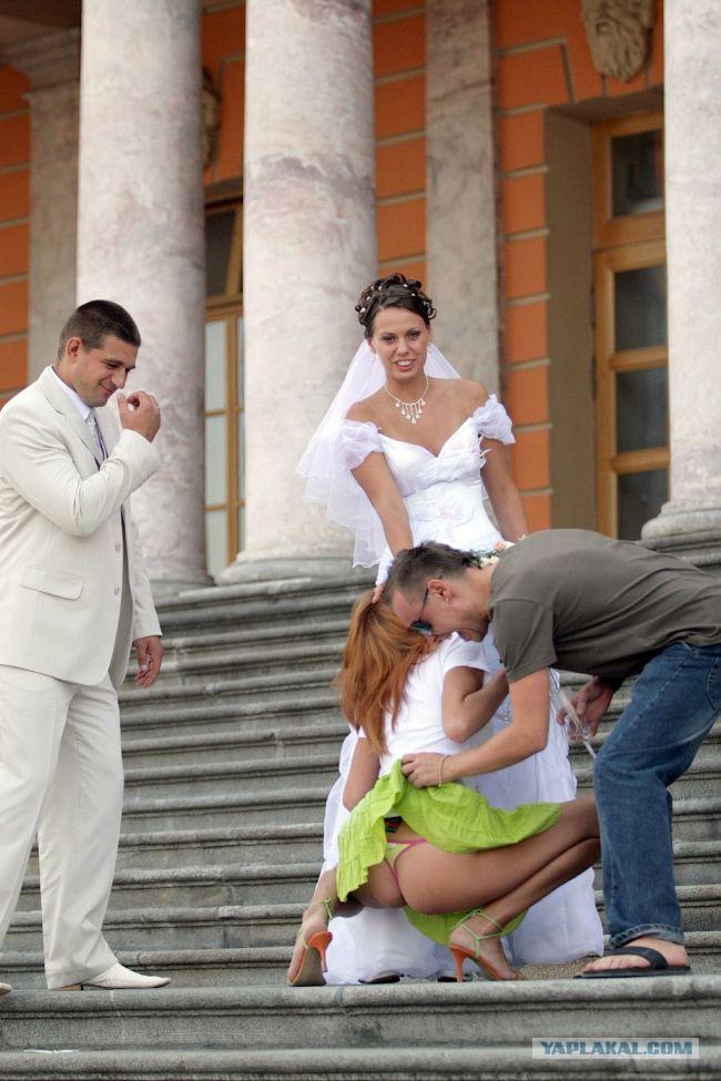 русские студентки на свадьбе