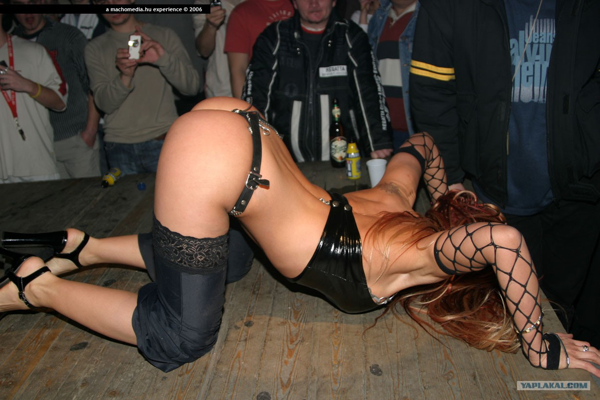 в будапеште фото порно фестивали