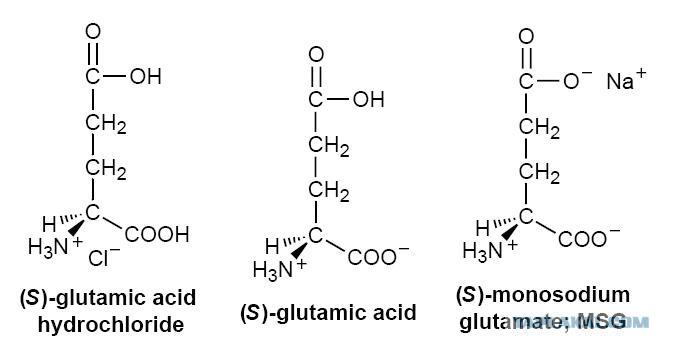 физико-химические свойства глутамат натрия е621 e621