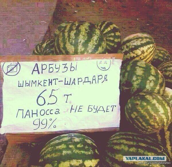 картинка купи арбуз