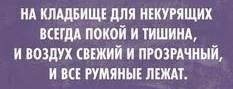 https://s00.yaplakal.com/pics/pics_original/1/3/4/14504431.jpg