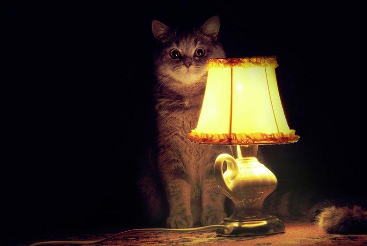 Сиськи с лампой