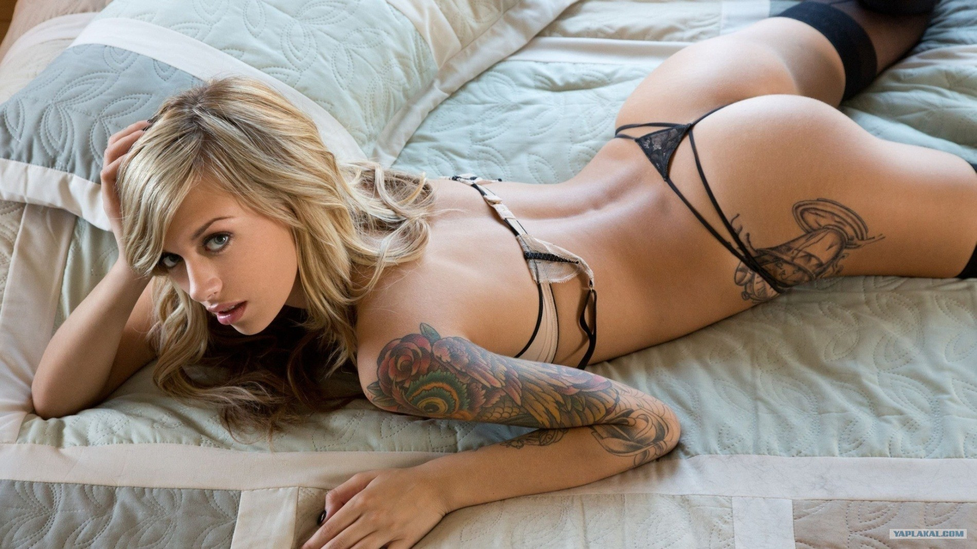foto-samih-krasivih-porno-aktris-lesbiyanki