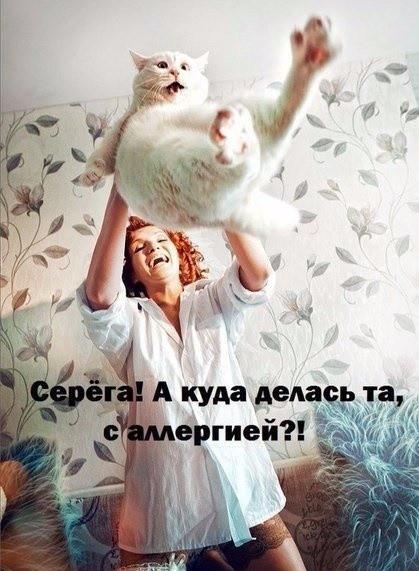https://s00.yaplakal.com/pics/pics_original/1/5/2/14727251.jpg