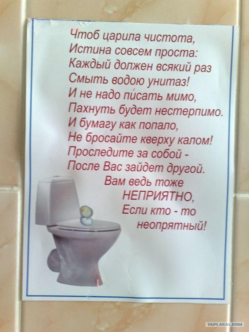 Крутые, картинки надпись в туалете о чистоте прикольные