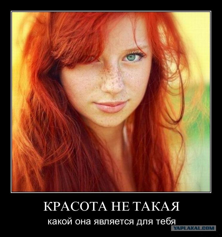Рыженькие волосы на лобке