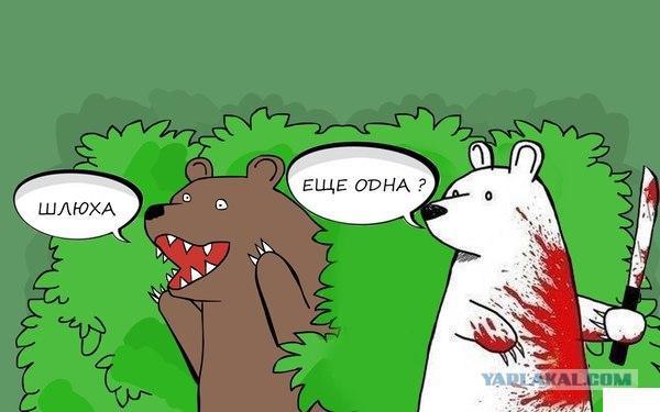Флирт белой медведицы. Теперь я видел все