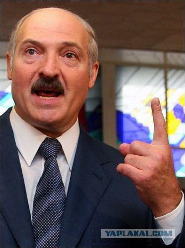Белорусский трикотаж. - ЯПлакалъ
