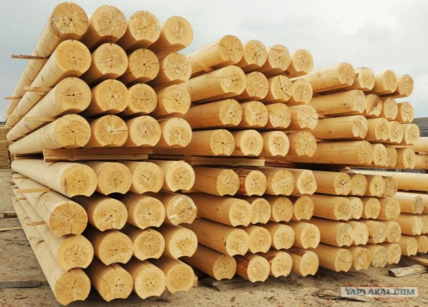 Каждому россиянину положено 150 кубометров леса куда обращаться
