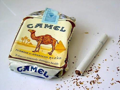 сигареты кэмел без фильтра купить в мягкой пачке москве