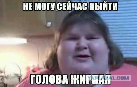 Картинки по запросу смешные картинки про жирных