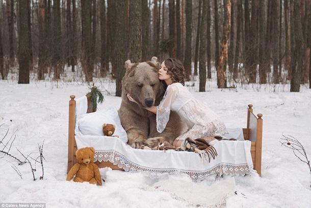 Соболь ебет медведя