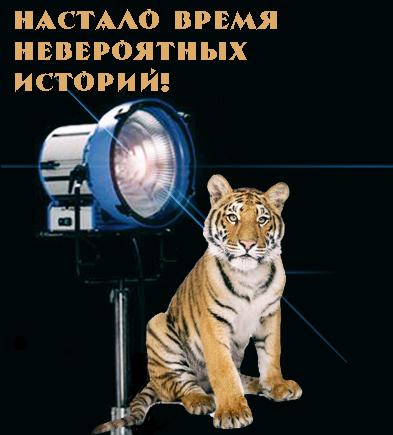 https://s00.yaplakal.com/pics/pics_original/1/9/8/6899891.jpg