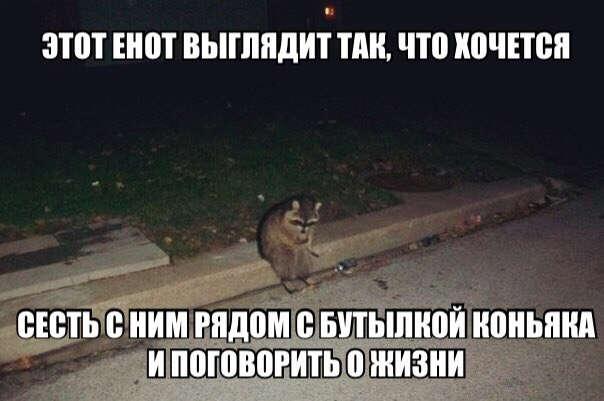 https://s00.yaplakal.com/pics/pics_original/2/0/2/11209202.jpg