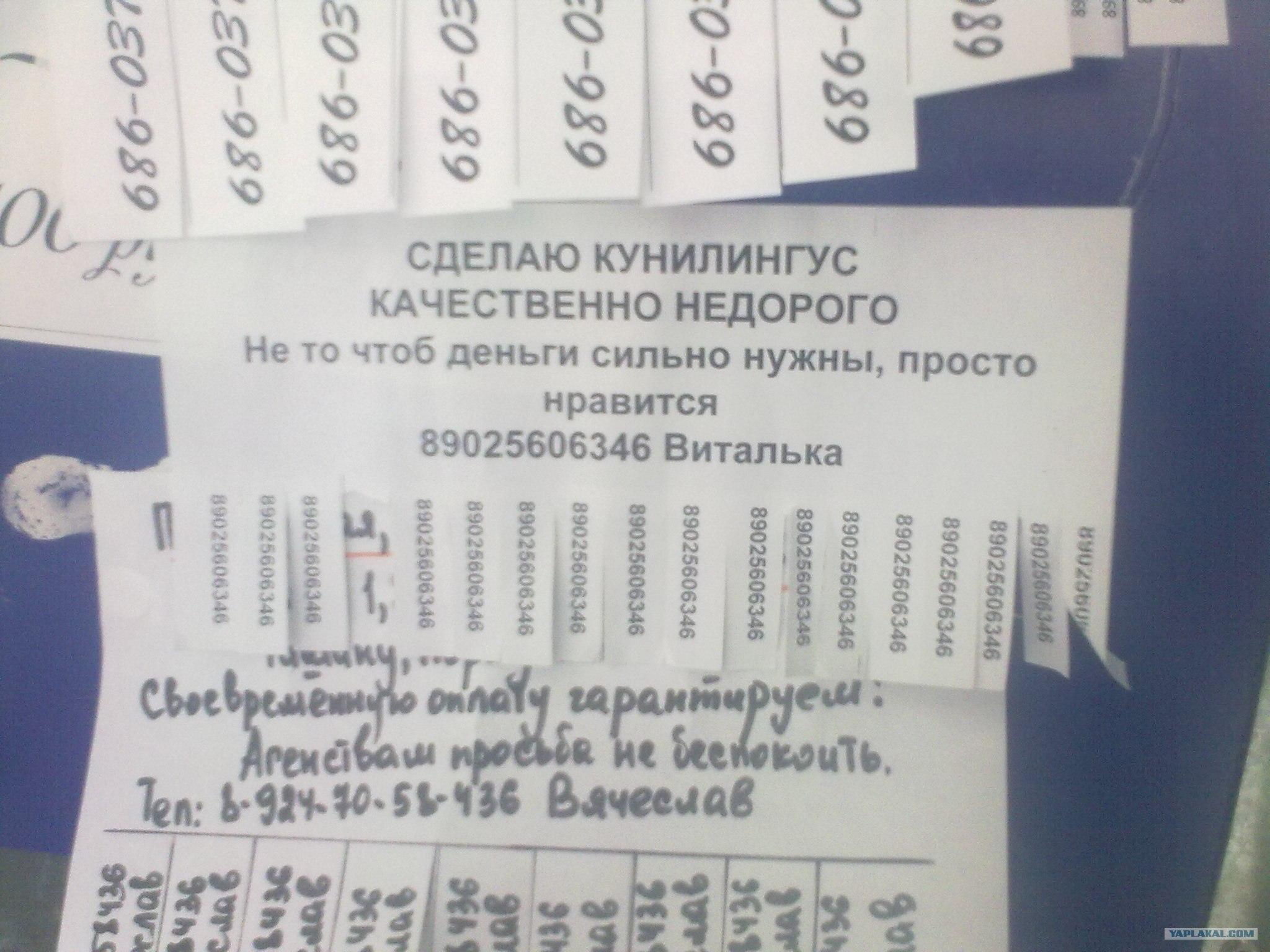 Объявление для проститутов