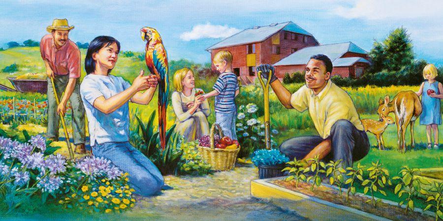 Картинки про свидетелей иеговы