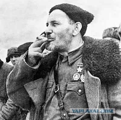 Член партизанского отряда д медведев