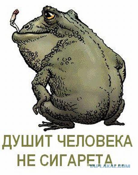 прикольные картинки жаба давит что если