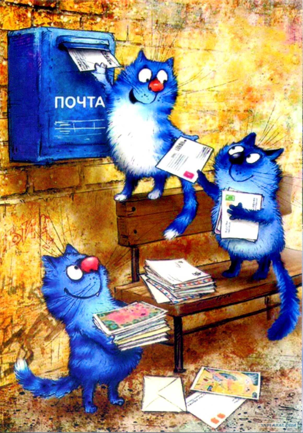 каждого почтовые открытки кошка сделать выбор