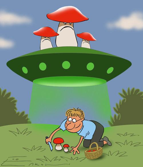 Открытки про грибы прикольные, февраля открытки своими