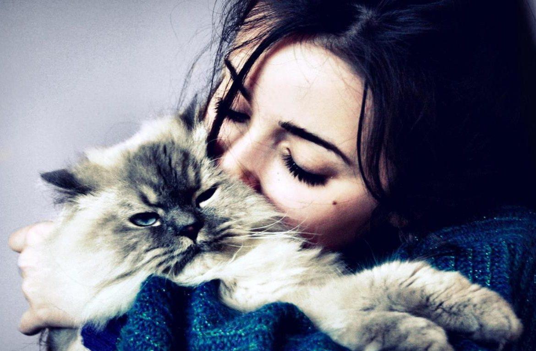 правильно питаться ава кот с девушкой легковых автомобилей Тойота