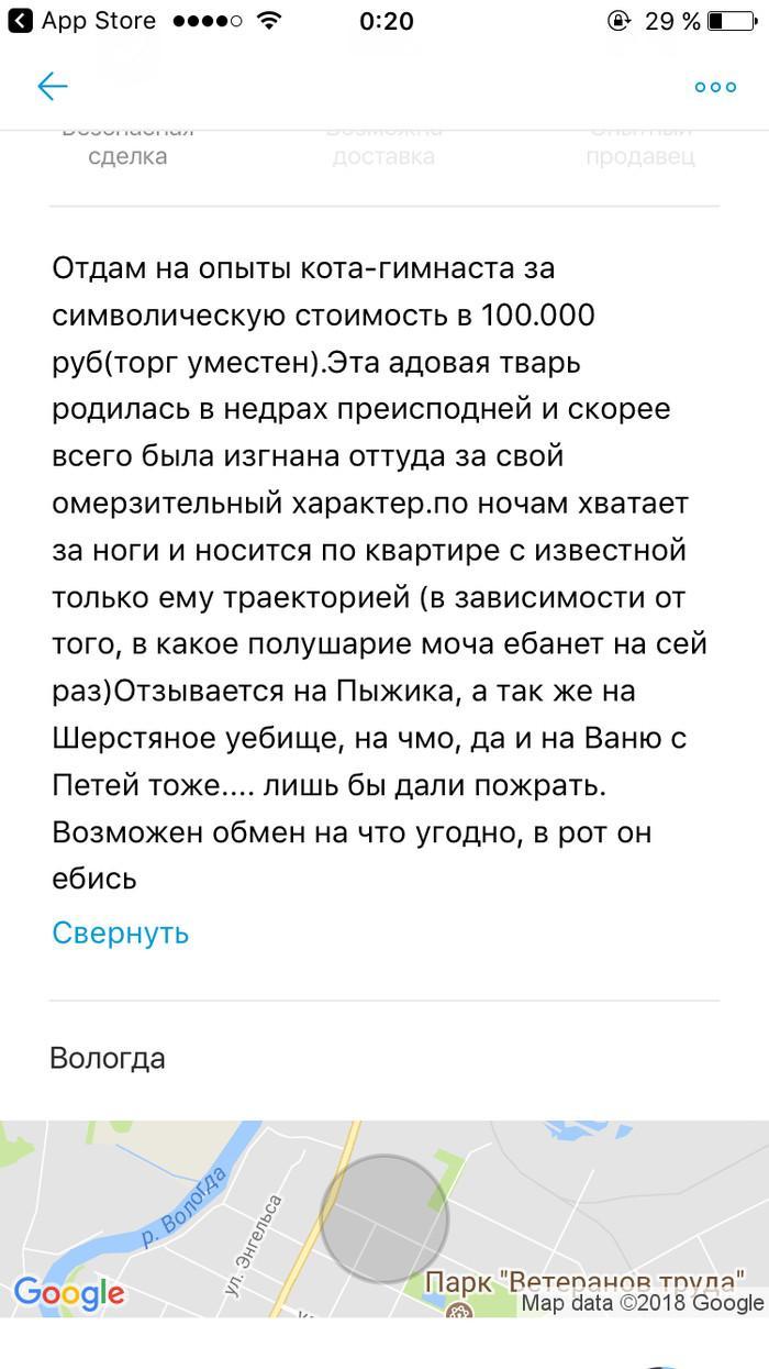 Разместить объявление юмор бесплатная доска объявлений луганске