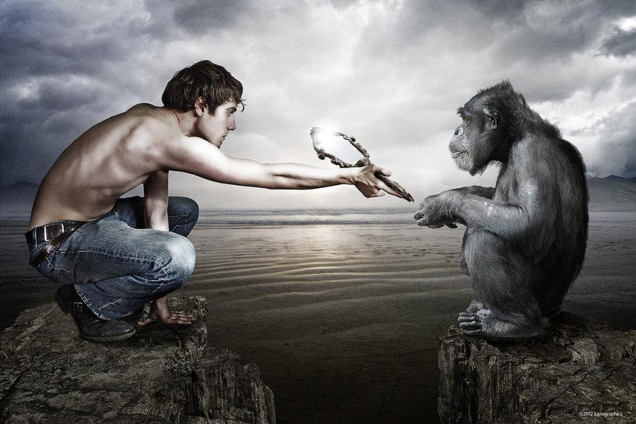 Картинка обезьяна и человек