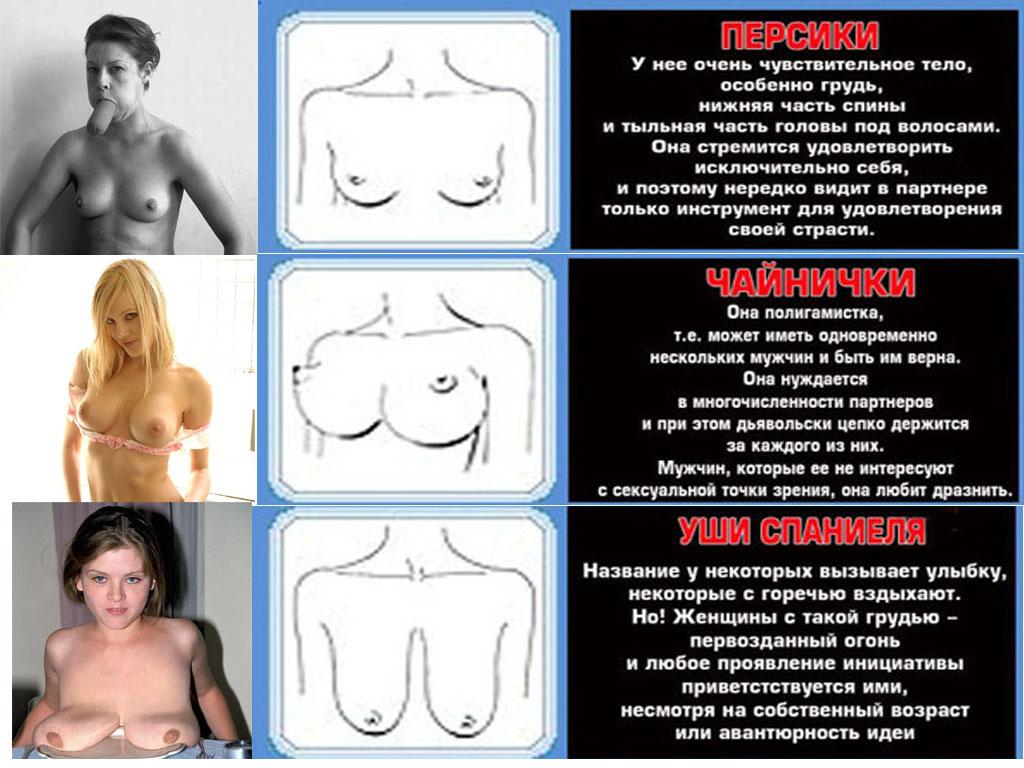 Женские гениталии крупно онлайн