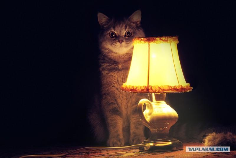 Путану на ночь которые на сайте фото 238-191