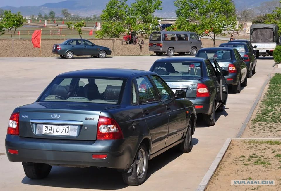 кашкадарьинская обл номер машины фото ссылке