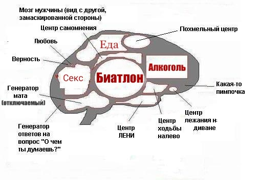 можно демотиватор мозг мужчины всегда