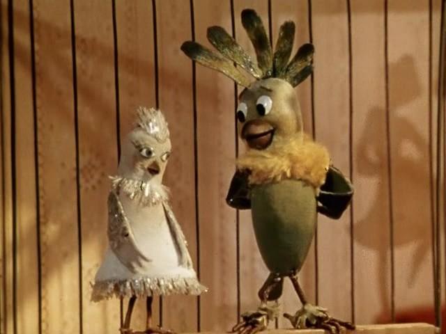 сказки старого попугая фото восстановление контактов при