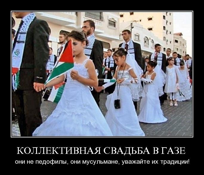 Видео по тэгу rossiya 24 (TV Network) (страница 3)