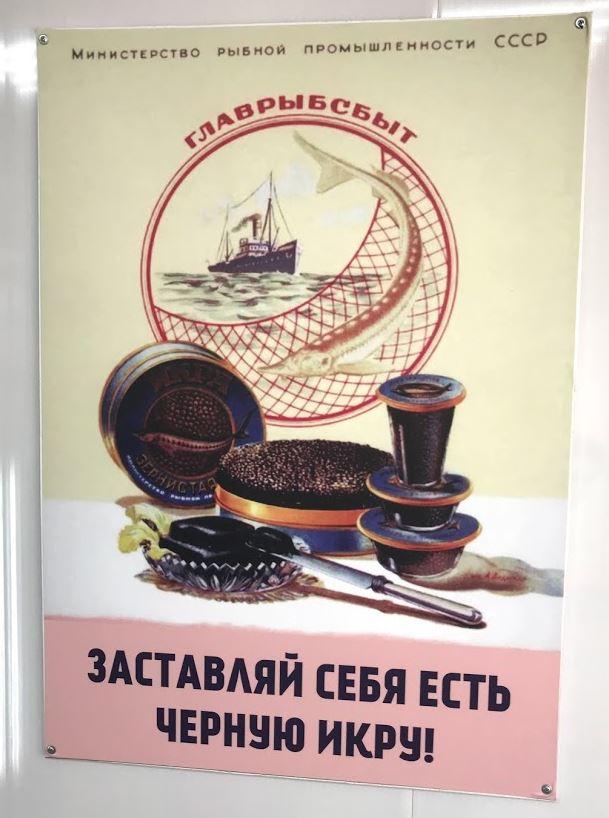 Плакаты с рыбной фермы. Фото