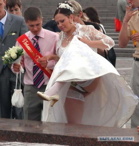 порно курьезы на свадьбе