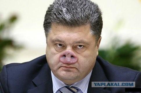 СЕНСАЦИЯ! В Новороссии ополченцами задержан Парашенко!