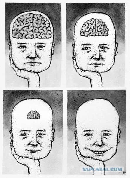 Ученые выяснили, что у умных людей меньше друзей