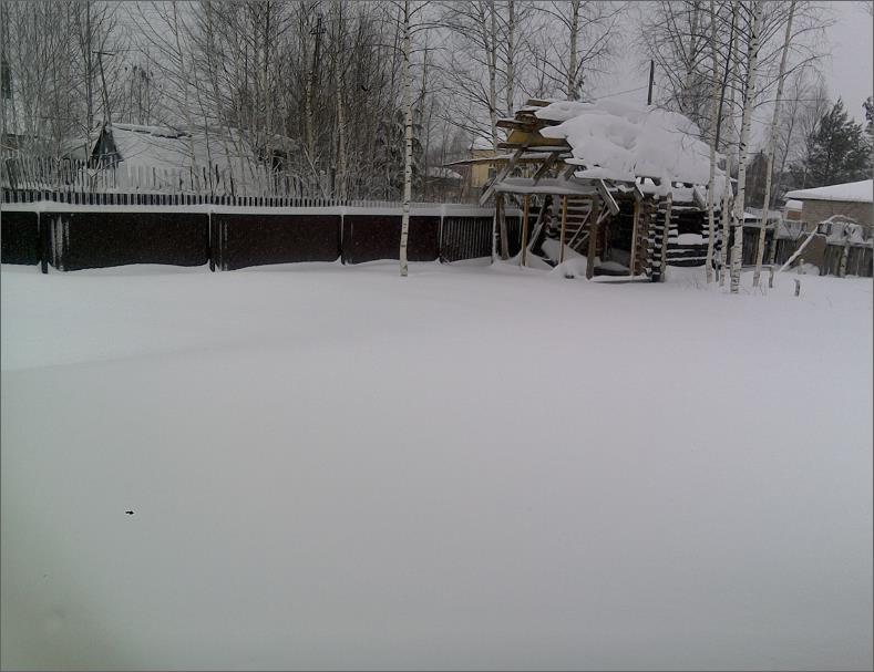 Мой двор картинки