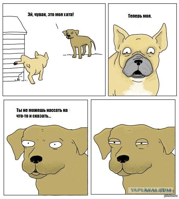 15 комиксов про то, о чем думают животные