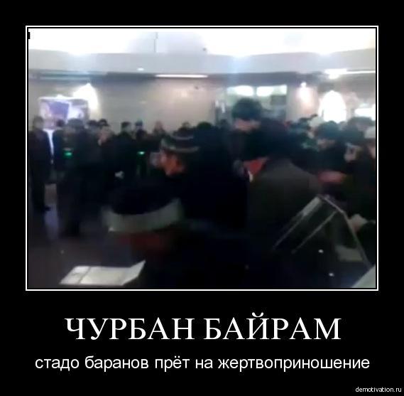 дерзкий картинки демотиваторы про курбан магазин фототоваров