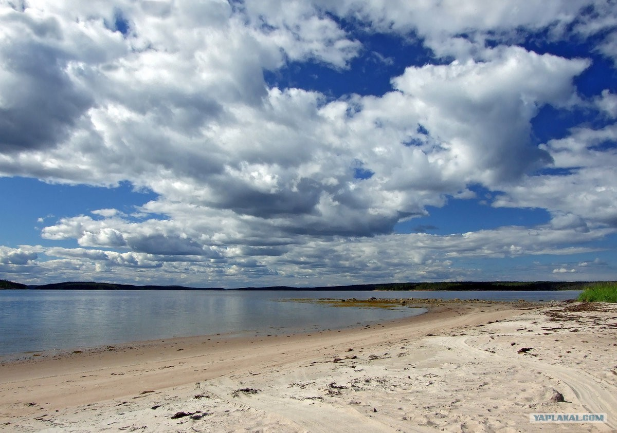 узнаете, чем белое море пляж фото веяние