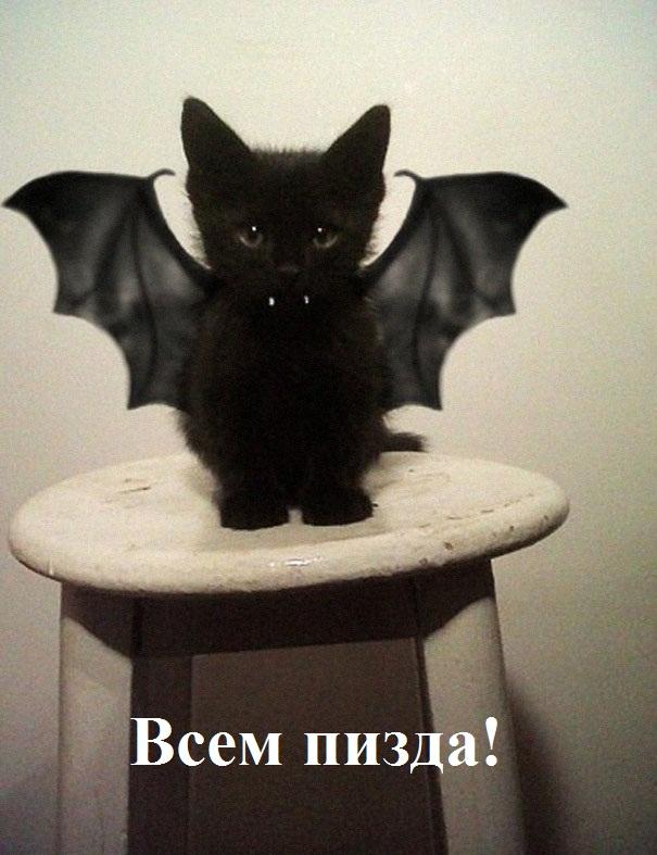 Поклонская выступила против празднования Хэллоуина в России
