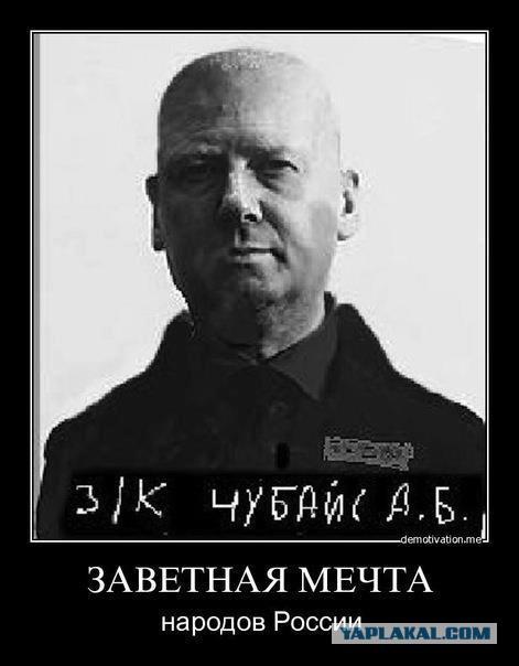 Чубайс отчитался Путину о достижениях «Роснано» за девять лет