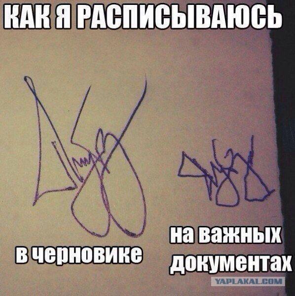 Приколы картинки подписи