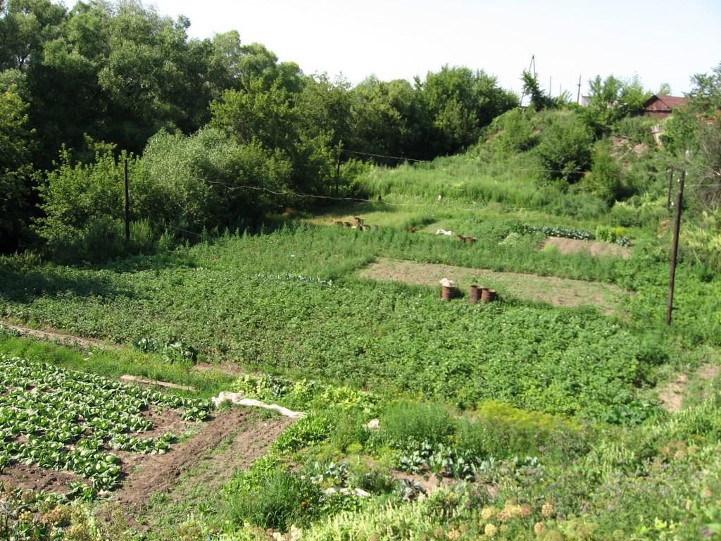 село батурино рязанская область фото вам нужно